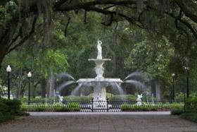 Savannah/