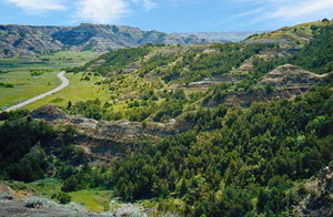 Theodore Roosevelt National Park/
